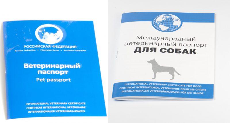 поспорт для собаки