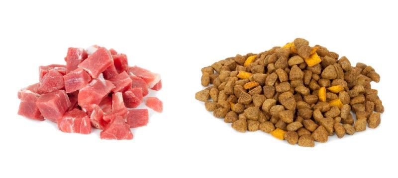 Мясо и сухой корм