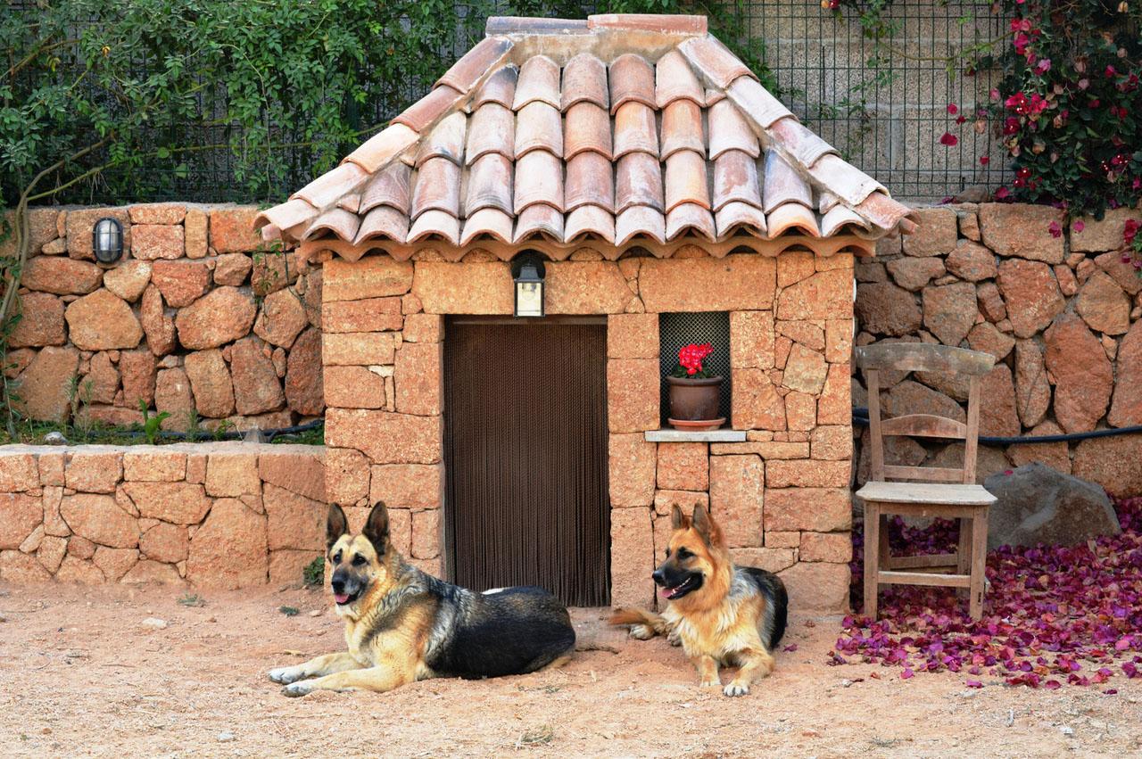 будка для сторожевых собак