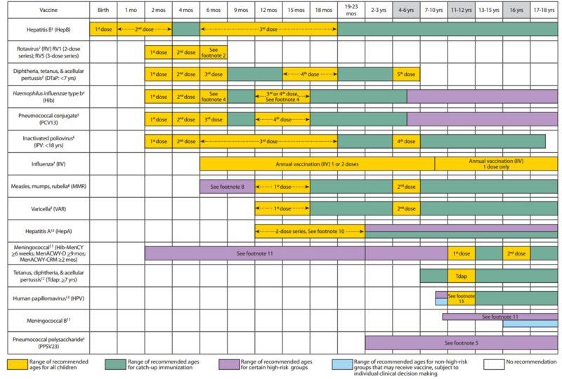 график прививок